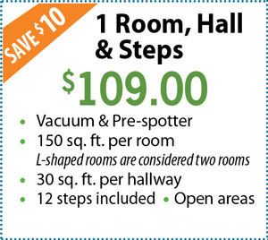 1 Room, Hall and Steps $109